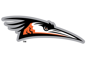 Hosting Prostate Cancer Survivors at the Delmarva Shorebirds
